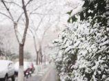 大雪、暴雪!2018年连云港第一场雪来了