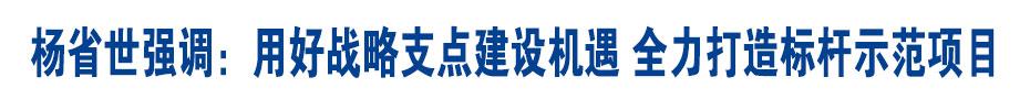 杨省世强调:用好战略支点建设机遇 全力打造标杆示范项目