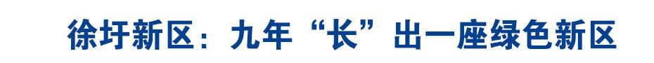 """《在习近平新时代中国特色社会主义思想指引下—新时代新作为新篇章》徐圩新区:九年""""长""""出一座绿色新区"""