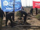 连云港市保险业开展植树节义务植树活动